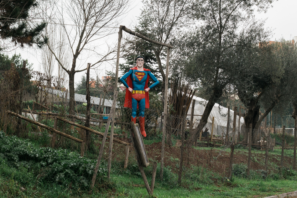 superman-1886-2